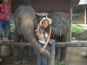 Taz with elephants